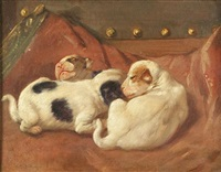 the comforts of home, pointer puppies by arthur charles dodd