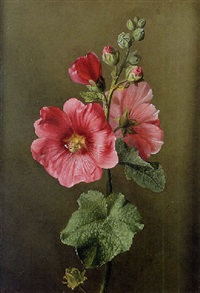 a sprig of flowers by ange louis guillaume lesourd-beauregard