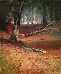 autumn forest scene by thorvald simeon niss