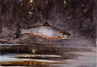 brooktrout and mayflies by john swan