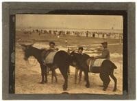 deux ânes sur la plage by léon gimpel