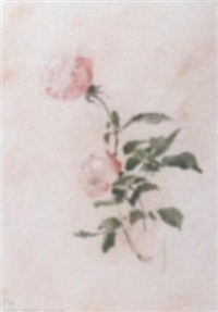 roses by maria hofker-rueter