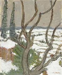 paysage d'hiver by albert sauter