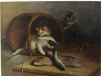 chats aux poissons by jean-charles renaud