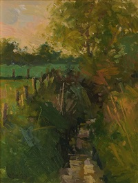 stream in skerries by paul kelly