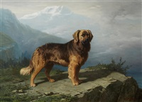 a leonberger in an alpine setting by conradyn cunaeus