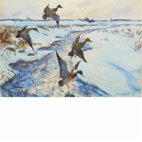 ducks in flight winter on the marshes by john whorf