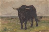 bull by simão frade da veiga