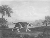 the spanish pointer by william woollett