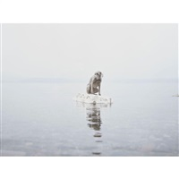 floating away by william wegman