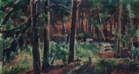 lesní cesta by vaclav rabas
