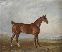 a chestnut hunter in a landscape by benjamin marshall