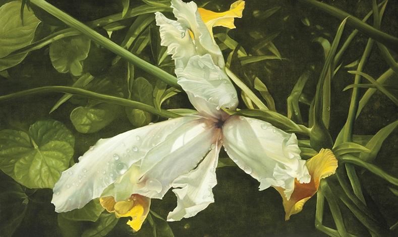 iris by elisabeth krüger