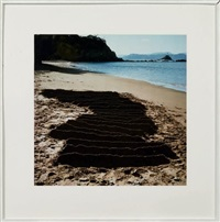 kinagashima-cho by andy goldsworthy