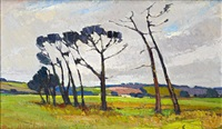 trees at faure, cape town by pieter van heerden