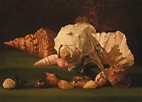 nature morte aux coquillages by simon renard de saint-andre