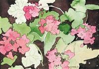 pink geranuium by claude a. simard