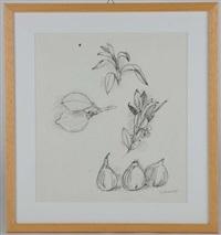 fichi, limone e foglie by oscar saccorotti