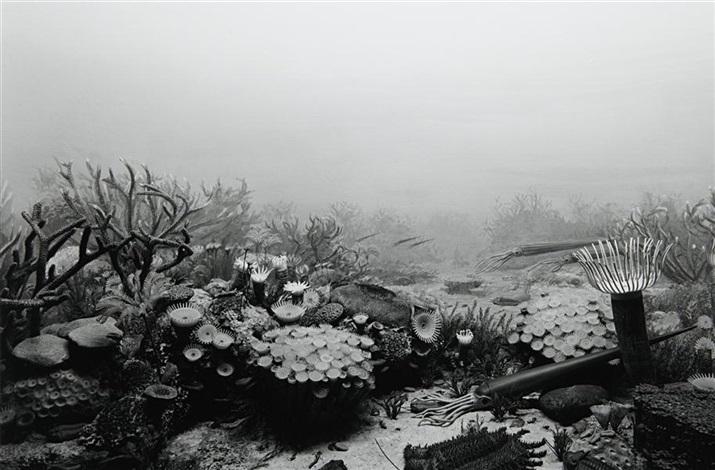 devonian period by hiroshi sugimoto
