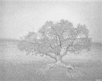 amanecer del solitario by claudio rikelme