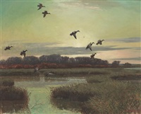 ducks in flight by reveau mott bassett