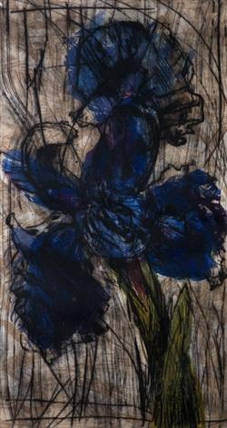 iris by william kentridge