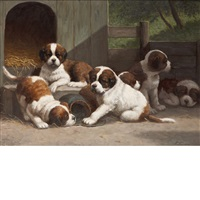 puppies in the pen by anton karssen