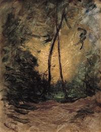 tramonto tra gli alberi by amedeo ghesio volpengo