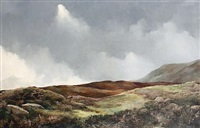a moorland landscape with birds in flight in the distance by berrisford hill