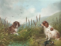 study of two terriers by george armfield