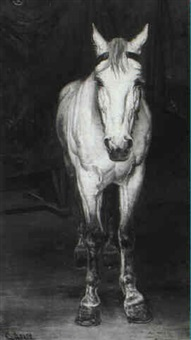 portrait of a white horse by sergej arago