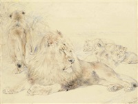 the pride of lions by william huggins