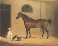portrait of a bay hunter and two dogs, in a stableyard by henry calvert