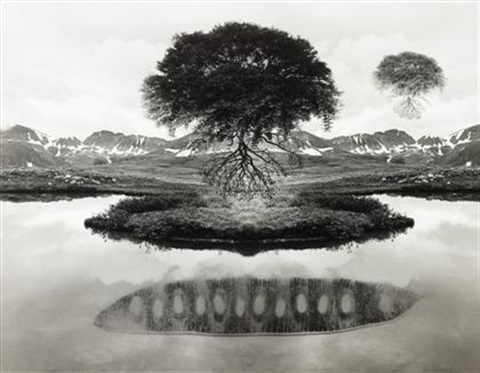 floating tree by jerry uelsmann