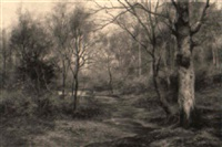 a march morning in the woods by walter boodle