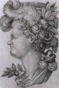 study of a male profile by tiburzio passarotti