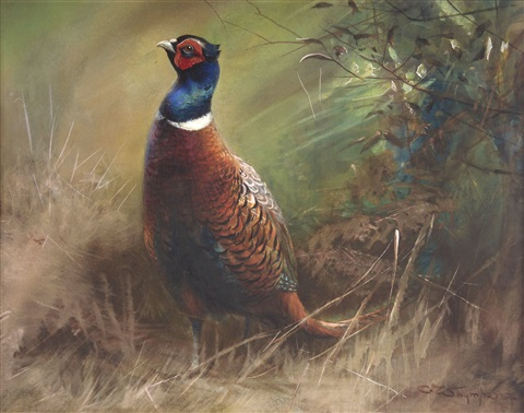 pheasant in landscape by charles whymper