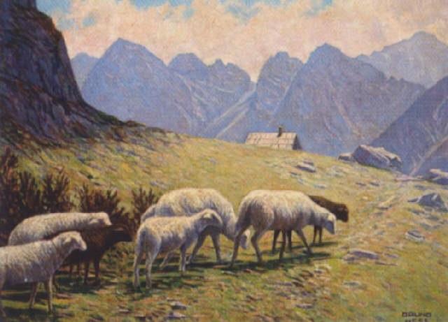 alm heimkehrende schafe by bruno hess