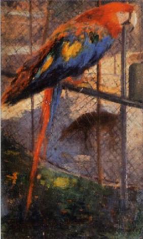 papagei im zoo by károly karl pongrácz von szentmiklós