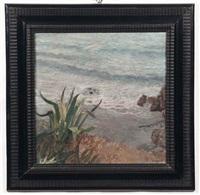 marina con agave by pietro dodero