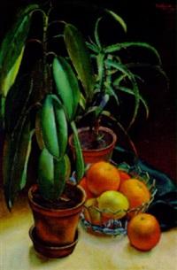 stilleben mit gummibaum, orangen und zitronen by fritz rocca-humpoletz