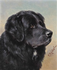 a newfoundland (+ a setter; pair) by carl reichert