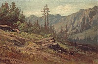 on the road from summit to soda springs by william franklin jackson