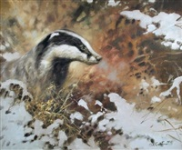 badger in snow by mick cawston