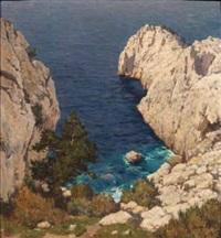 scogliera by alberto cecconi