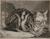 le grand chat by cornelis visscher