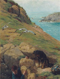 gathering eggs on the cliffs of lundy by bryan hook