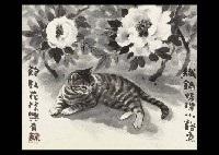 peony cat by akira akizuki