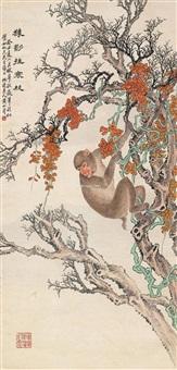 猿影寒枝 屏轴 设色纸本 ( monkey) by huang shanshou