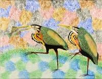 les ibis by mulongoy pili pili